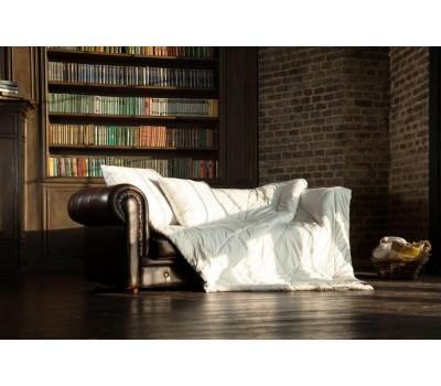 Купить онлайн 64131 Одеяло CAMEL WOOL GRASS легкое 150х200